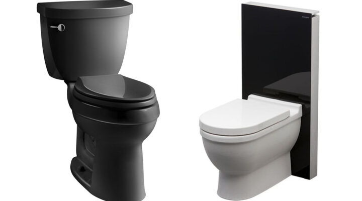 Best Budget Flushing Toilets Reviews